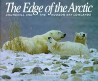 The Edge of the Arctic